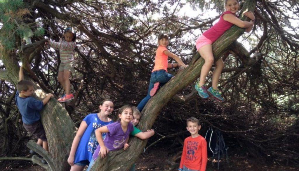 children-free-week-january