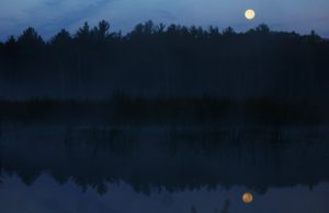 SOLD OUT! Full Moon Hike with Steve Troop