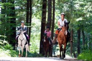 horseback riding
