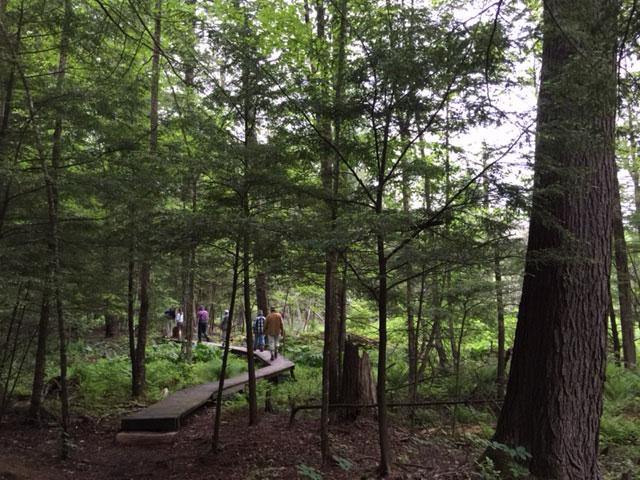 interp-trail-1