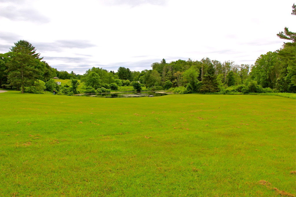 ongley pond field