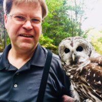 owl-prowl