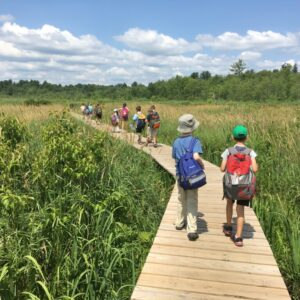 Natural History Explorers Summer Camp 2021 (Grades 3-9)
