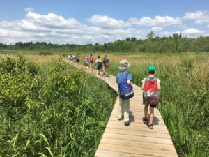 Natural History Explorers Summer Camp (Grades 3-9) @ A.B. Ceder Room