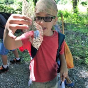 After-School Adventures: Virtual Nature Detectives (Grades 4-6)