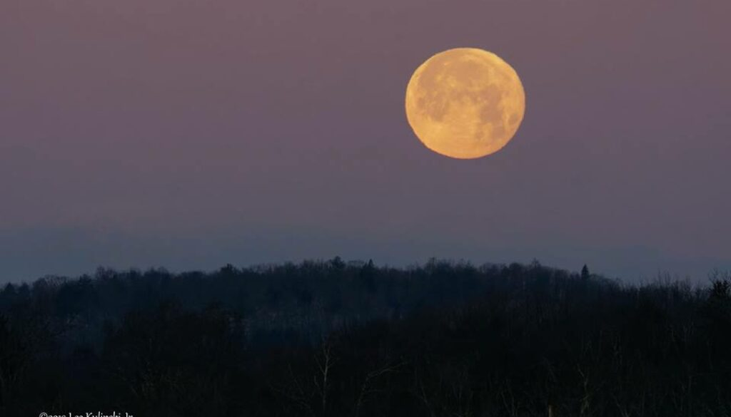 leo wol;f moon over bantam lake