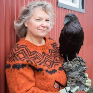Virtual Iceland with Gerri Griswold