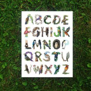 Amanda Surveski ~ Bird Alphabet Illustrated Poster