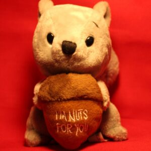 """I'm Nuts for You"" Plush Squirrel with Fluffy Tail"