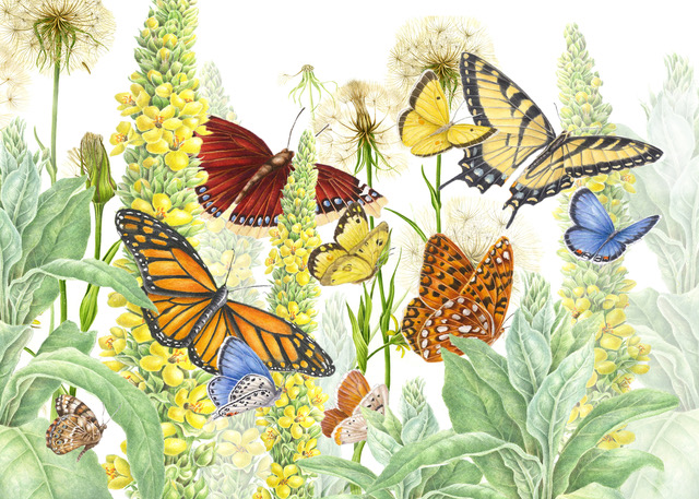 Butterflies on Parade copy