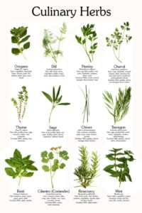 The Pandemic Pantry ~ Cooking with Herbs
