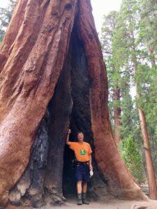 Sequoia National Park, California Through the Eyes of Tom Alena
